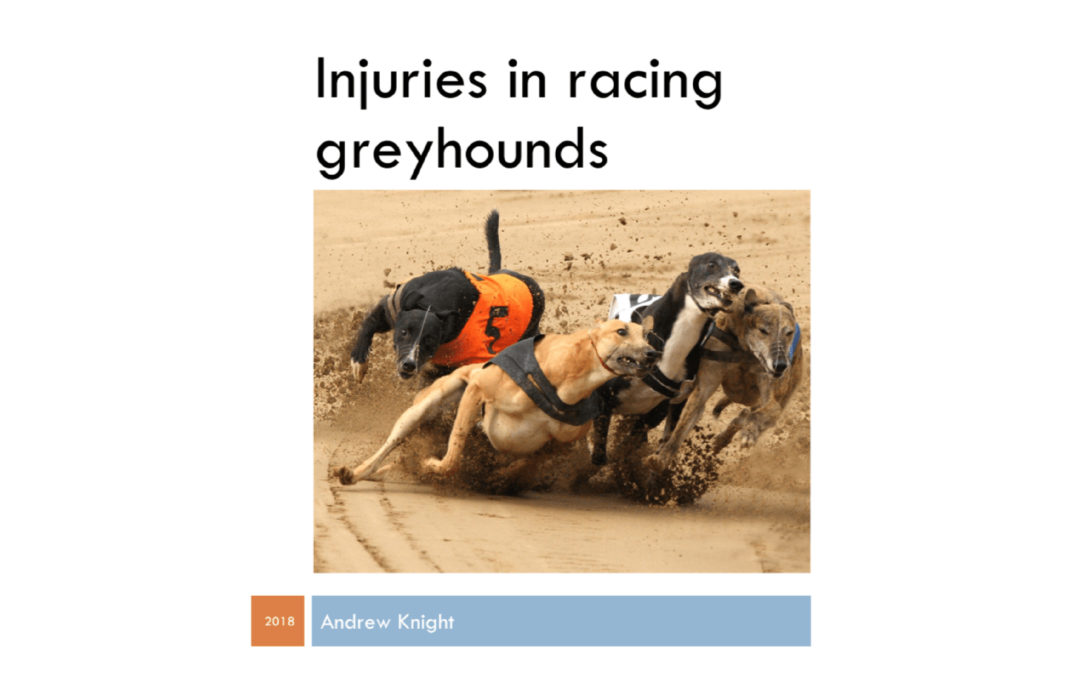 Report: Injuries in Racing Greyhounds