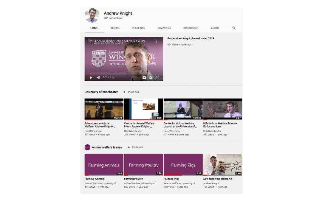 Youtube channel reborn