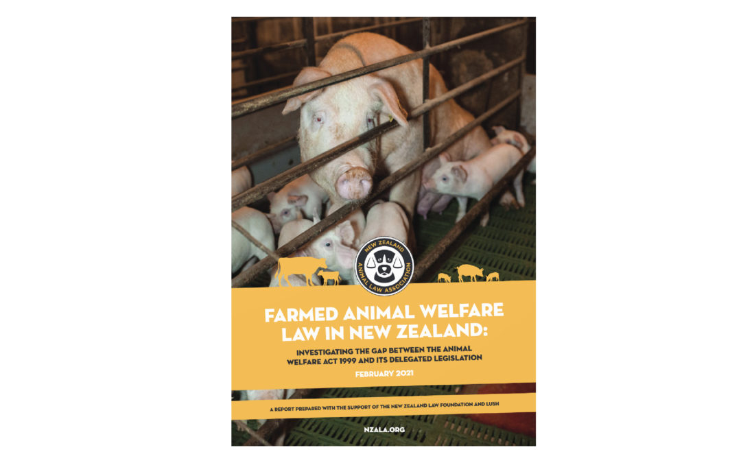 Report: Animal Welfare Law in New Zealand