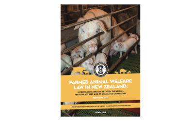 Report: Animal Welfare Law in New Zealand