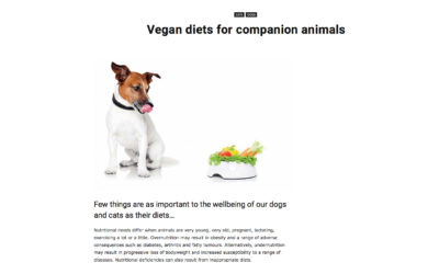 Article: vegan diets for companion animals